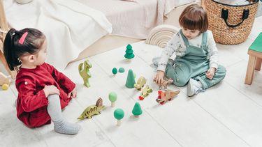 speeltype kind