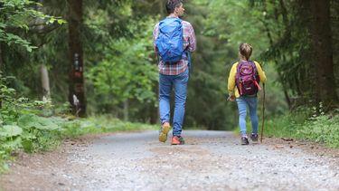 Vader en dochter die samen wandelen door het bos