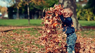 Kind dat met herfstbladeren gooit, een van de herfstactiviteiten van dit lijstje