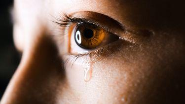 Met tranen in mijn ogen moet ik bekennen dat ik mijn ene kind leuker vindt dan mijn andere kind
