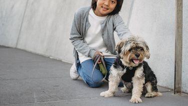 huisdier / jongetje met hond