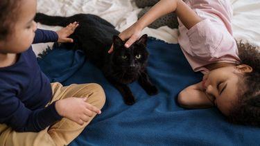autisme / meisjes liggen op bed met kat