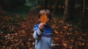 Jongetje die herfstblad voor zich houdt tijdens een herfstwandeling in de bossen